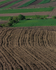 Sown (Stefan Ursachi) Tags: sowing sow sown field fields countryside country nature natural rural lands land landscape plant corn easterneurope romania romanian agriculture canon dslr eos 450d xsi tamron 80210 exploring soil
