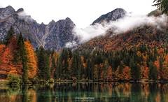 Un variopinto spettacolo (fontanini.stefano) Tags: autumn fall trees clouds mountains view landscape colors alpinelake alpine water canon friuli italy fusine lake alps