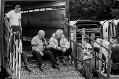 The great debate (Frank Fullard) Tags: frankfullard fullard debate discussion talking candid street group portrait horse fair men horsemanure topic galway irish ireland trailer truck lorry vehicle
