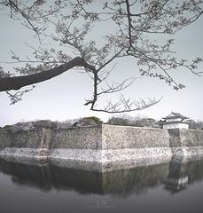 Pink Veil (Loscar Numael) Tags: japan minimalcolor minimal minimalism longexposure ndfilter landscape