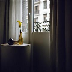 Rainy Day - Barcelona (magnus.joensson) Tags: spain barcelona h10 casa mimosa april sailing the mediterranean rolleiflex 35 carl zeiss tessar 75mm kodak porta 400 c41 6x6 medium format flower