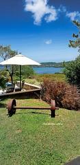 Paradis #Martinique #levauclin #sea #sun #sunnysky #sunnyday #bluesky #blue #garden #nature #outside #umbrella #pool #poolside #carribeanlifestyle #carribeancolours #islandlife #carribeanparadise #carribeangarden #colours #peace #Madinina #harmony #travel (isabella.cabre) Tags: carribeanparadise harmony bluesky placetovisit samsunggalaxynote8 sun sea islandlife trip martinique poolside placetosee flikr carribeancolours carribeangarden carribeanlifestyle levauclin nature umbrella pool madinina blue sunnysky outside vacations peace garden samsungphotography travel sunnyday colours