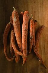 Organic (gootyeriz) Tags: provia 100f slide film pentax spotmatic the darkroom lab food photography carrot