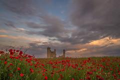 Tiempo de amapolas 2. (Amparo Hervella) Tags: caudilla toledo españa spain paisaje castillo flor amapola cielo nube atardecer color naturaleza largaexposición d7000 nikon nikond7000