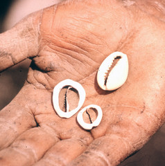 NG-Dorrestein-058 (Stichting Papua Erfgoed) Tags: papua stichtingpapuaerfgoed pace papuaheritagefoundation nederlandsnieuwguinea irianjaya irianbarat newguinea voormalignederlandsnieuwguinea
