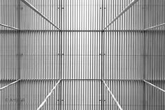Giant Cage (ARTUS8) Tags: symmetrie minimalismus pattern bildkomposition nikon1635mmf40 flickr blackwhite muster struktur linien modernearchitektur nikond800 öffentlichesgebäude