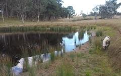 500 Dyamberin Road, Wongwibinda NSW