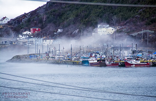 The Waters of St.John's