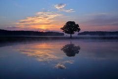 IMG_9352 (geraldtourniaire) Tags: landschaft sonnenaufgang canon 6d eos6d 24105l ef natur nature spiegelung franken