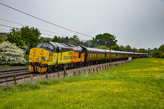 37219 + 37116 - Dagworth - 12/05/18. (TRphotography04) Tags: colas rail freight 37219 jonty jarvis 8121998 1832005 tnt with railfreight 37116 rumble past dagworth working the 565 special take 2 branch line society 1z56 0544 carnforth norwich railtour