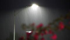 It does rain in So Cal .......... (Chuck Gerber) Tags: elements rain socal
