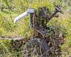 U.R.O. (augphoto) Tags: augphotoimagery abandoned decay unknown vehicle weathered williamson westvirginia unitedstates