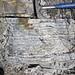 Sandstone (Middle Pennsylvanian; Frazeysburg Pit, Muskingum County, Ohio, USA) 4