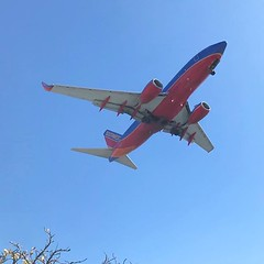 Almost there.⠀ ——————————————⠀ ✈️ Boeing 737⠀ 🏢 Southwest Airlines ⠀ 🌏 Los Angeles LAX ⠀ ———————————————-⠀ #boeing #737 @southwestair #aviation #lax #losangeles #landing (aeroTELEGRAPH) Tags: plane air travel airport