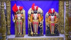 NarNarayan Dev Sandhya Darshan on Wed 02 May 2018 (bhujmandir) Tags: narnarayan dev nar narayan hari krushna krishna lord maharaj swaminarayan bhagvan bhagwan bhuj mandir temple daily darshan swami sandhya