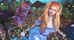 Curiouser (clau.dagger) Tags: enchantment secondlife fairytales fantasy event luas nomatch hextraordinary raindale hair cat dress gown mushrooms insol catwa adorablystrangewares cerridwenscauldron lore eternaldream