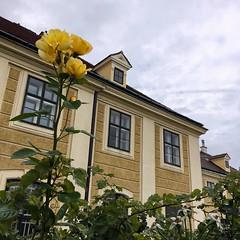 Schönbrunn (brimidooley) Tags: schönbrunn schloss palace vienna vienne wien austria europa europe city citybreak travel österreich eu viedeň tourism viena