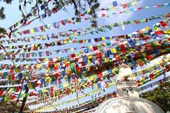 2018-04-07 (Giåm) Tags: kathmandu kathmandou katmandou katmandu काठमाडौं swayambhunath swayambu swayambhunathtemple स्वयंभू monkeytemple kathmanduvalley nepal नेपाल giåm guillaumebavière