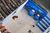 055 (JirkaVorel) Tags: portugal europe dog blue mertola vase animal