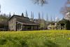 IMG_2018_04_20_02802__1__2_Compressor (gravalosantonio) Tags: primavera jaca huesca aragon jactancia españa pirineos flores dienteleon huerta ecologico