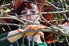 Enchevêtrement (stefaniebst) Tags: selfportrait autoportrait printemps spring forest woods woodland woman girl femme red redhair redhead branche fineart fineartphotography conceptphoto conceptualphotography pof