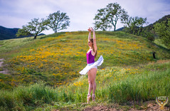 California Superbloom Wildflower Ballerina! Fine Art Ballerina Dances Classical Ballet in Pointe Shoes! High Res Golden Ratio Ballet Dancer Photography! Graceful Athletic Action Portraits of Professional Ballerina!  Bikini Swimsuit Blue Leotard & Tutu! (45SURF Hero's Odyssey Mythology Landscapes & Godde) Tags: sony a7 r super sharp carl zeiss 55mm glass the awesome sonnar t fe f18 za lens california superbloom wildflower ballerina fine art dances classical ballet pointe shoes high res golden ratio dancer photography graceful athletic action portraits professional bikini swimsuit blue leotard tutu