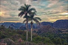 Abenddämmerung Vinales Tal / Kuba (unicorn 81) Tags: 1024mm repúblicadecuba republikkuba inselstaat karibik groseantillen kubarundreise2018