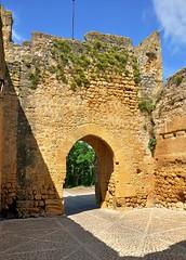 Carmona : Alcázar del Rey Pedro (Pantchoa) Tags: carmone espagne andalousie alcazarderey alcazar architecture vieilles pierres ruines antiquités alcázardelreypedro