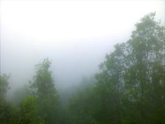Le brouillard depuis le chantier