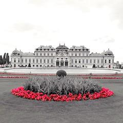 Schloss Belvedere (schasa68) Tags: viennawienschlossaustriaösterreichbelvedere