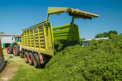 CLAAS Team   CLAAS CARGOS 9600 dual-purpose (martin_king.photo) Tags: springwork springwork2018 silage silage2018 brandnew new claascargos9600 claascargos claas wagon inaction action first today michelin tires big strong silo outdoor claasworldwide biggest strongest huge machine sky martin king photo agriculture machinery machines tschechische republik powerfull power dynastyphotography lukaskralphotocz agricultural great day czechrepublic fans work place tschechischerepublik martinkingphoto welovefarming working modern landwirtschaft colorful colors blue photogoraphy photographer canon tractor love farming daily onwheels farm skyline allclaaseverything claasfans worker claasaxion axion axion950 cmatic