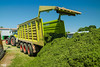 CLAAS Team | CLAAS CARGOS 9600 dual-purpose (martin_king.photo) Tags: springwork springwork2018 silage silage2018 brandnew new claascargos9600 claascargos claas wagon inaction action first today michelin tires big strong silo outdoor claasworldwide biggest strongest huge machine sky martin king photo agriculture machinery machines tschechische republik powerfull power dynastyphotography lukaskralphotocz agricultural great day czechrepublic fans work place tschechischerepublik martinkingphoto welovefarming working modern landwirtschaft colorful colors blue photogoraphy photographer canon tractor love farming daily onwheels farm skyline allclaaseverything claasfans worker claasaxion axion axion950 cmatic