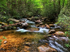 South Carolina Stream in the Spring (runcolt12) Tags: southcarolina spring appalachianmountains smokymountains mountains stream woods forest jonesgapstatepark