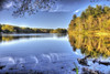Glistening shorelines (Pearce Levrais Photography) Tags: hdr canon 7d markii water lake pond reflection forest tree sky cloud shore shoreline plant log