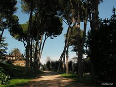 Пагорб Палатин, Рим, Італія InterNetri Italy 40