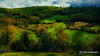 spring light  / 2105180394 (devadipmen) Tags: kocaeli landscape landscapephotographer mountain nature naturephotographer spring türkiye woods istanbul