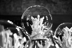 Saccharumania (Elios.k) Tags: horizontal indoors nopeople castle fortress châteaudechaumontsurloire châteaudechaumont medieval councilchamber saccharumania art artist piece artwork sculpture sugarflowers glassballs glasscases karinebonneval frenchartist room chamber palace interior dof depthoffield foregroundblur backgroundblur shallowfocus bokeh blackandwhite bw monochrome light travel travelling august2017 summer vacation canon 5dmkii photography amboise blois centrevaldeloire loirevalley france europe