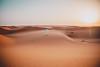 Wahiba Sands (dogslobber) Tags: yellow oman omani arabian arab peninsula middle east wahiba desert sands dunes sunset travel adventure explore wanderlust
