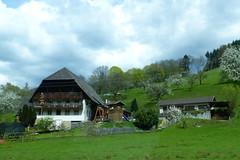 Im Glottertal (ivlys) Tags: schwarzwald blackforest glottertal valley landschaft landscape haus house baum tree natur nature ivlys