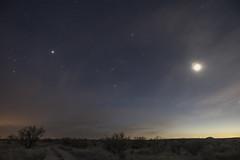 _DSC0799.jpg Bad Composition (Doug _ Weber) Tags: arizona arizonasky bluesky clouds colorful desert desertsky greenshaman dougweber light nightsky pink southwest sky sonorandesert stars moon tucson venus western