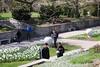 IMG_1684 (iphoneofkhanh) Tags: 12052018 botanic loyal garden g