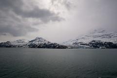 MS Westerdam - 7 Day Alaska May 2018 - Glacier Bay-252.jpg (Cindy Andrie) Tags: alaska hollandamerica d800 nature britishcolumbia beach victoriabc westerdam glacierbay landscape nikon cindyandrie canada andrie glaciers nikond800 cindy