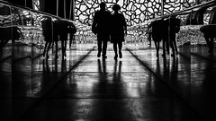 The Couple (Leipzig_trifft_Wien) Tags: marseille provencealpescôtedazur frankreich fr street streetphoto streetphotography black white monochrome bnw bw blackandwhite contrast reflection walking people urban city pov perspective mirror pattern texture structure