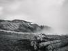 Stillness (I.Z.82) Tags: landscape mountain earth sky woodenlogs mountainretreat cloudy foggy windy blackandwhite fuji