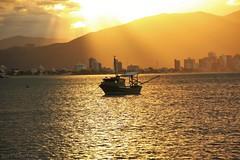 Barco de Pesca ao Por do Sol (AmeliaBerti) Tags: pôrdosol pordosol portobelo barco barcodepesca santacatarina sc sunset dourado gold