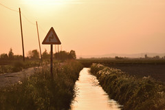 Un caldo tramonto (STE) Tags: luce light tramonto sunset segnale stradale curva doppia warm calda campagna country mood atmosphere