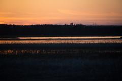 Ridasjärvi Sunset (talaakso) Tags: auringonlasku finland finnishlandscape finnishsunset hyvinkää nikkor28300 nikond610 ridasjärvi sky solnedgång sonnenuntergang sunset taivas terolaakso heijastukset landscape orange orangesky reflection reflexion talaakso uusimaa fi