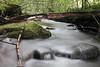 ohne Titel (stefandinkel) Tags: stefandinkel fujix100f bach wasser grün allgäu alpen stein moos