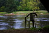 (Lwica Wędrowna) Tags: nature puszczykowo poland warta river chair relax contemplation green forest