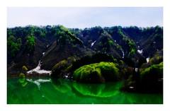 the season of fresh green #1 (kouji fujiwara) Tags: fujifilmxt2 fujifilm xt2 xf1655mmf28 xf1655mm f28 green freshgreen fresh spring 新緑 landscape landschaft